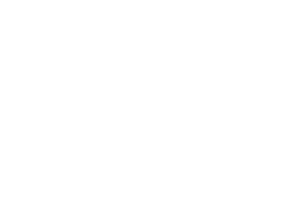 World investment forum 2021 solnik global investments corp